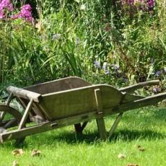 Zleć projektowanie ogrodu w Wałbrzychu