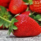 Kiedy sadzić truskawki?